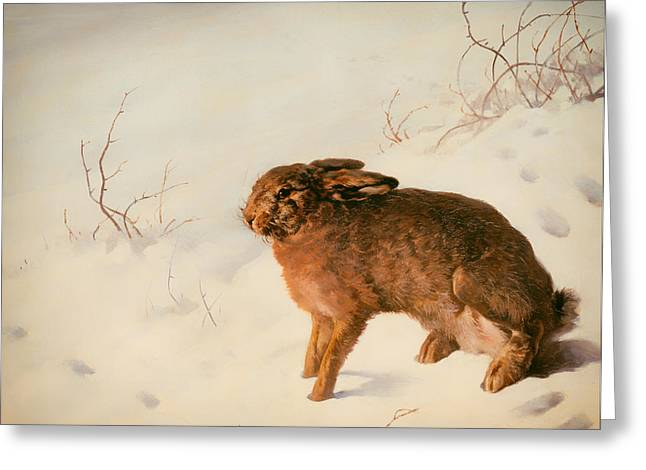 Hare Greeting Cards - Hare in the Snow Greeting Card by Ferdinand von Rayski