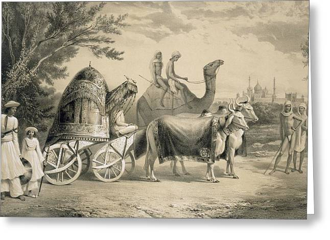 Harem Carriage Of The King Of Delhi Greeting Card by A. Soltykoff