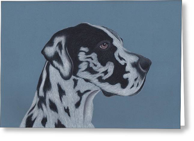 Puppies Pastels Greeting Cards - Harlequin Great Dane Greeting Card by Sesh Artwork