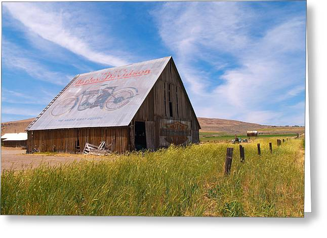 Recently Sold -  - Old Barns Greeting Cards - Harley Barn Greeting Card by Gary De Capua