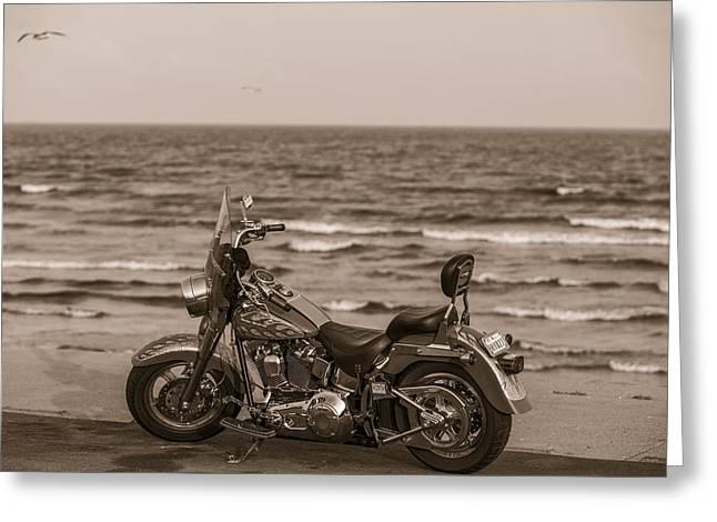 Galveston Greeting Cards - Harley Davidson in Galveston TX  Greeting Card by John McGraw