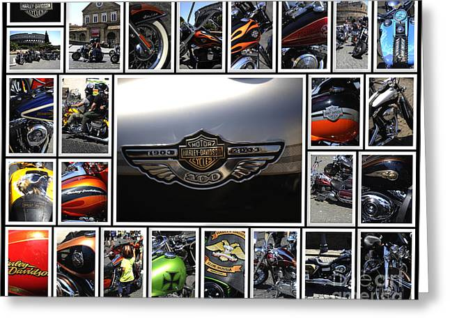 Harley Davidson Motorcycles Greeting Card by Stefano Senise