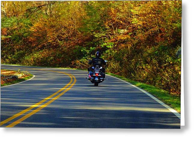 Road Travel Greeting Cards - Harley In Autumn Greeting Card by Dan Sproul