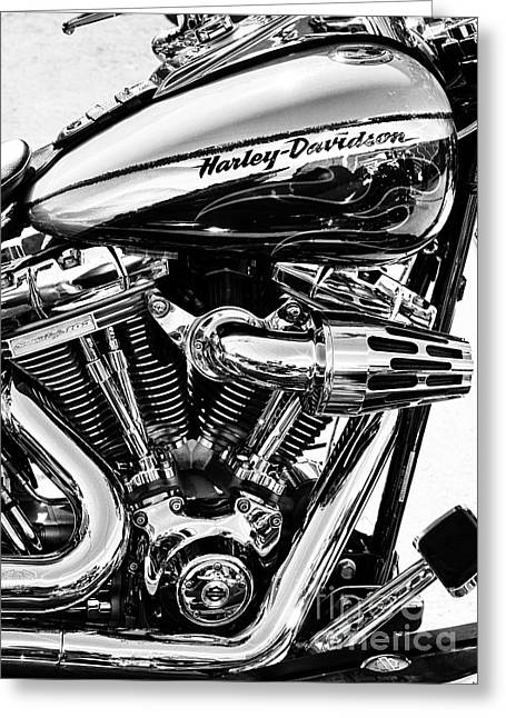 Cylinder Greeting Cards - Harley Monochrome Greeting Card by Tim Gainey