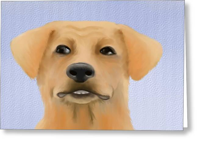 Dog Prints Greeting Cards - Harley the labrador dog close up Greeting Card by Marlene Watson