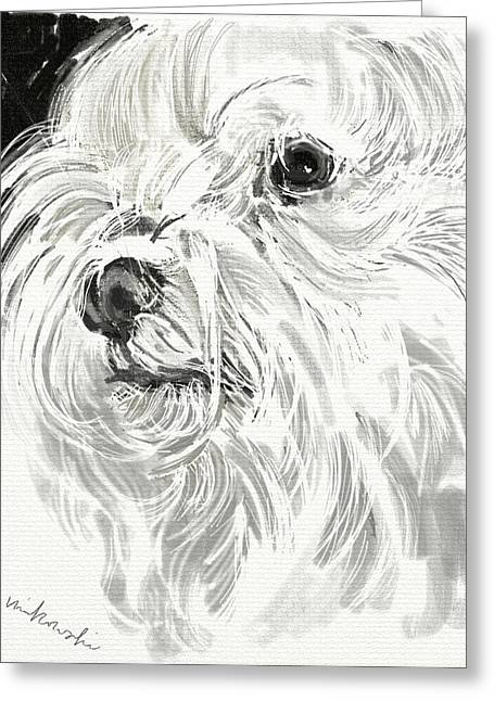 Dogs Jewelry Greeting Cards - Harley the Maltese Greeting Card by Linda Minkowski