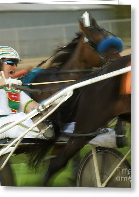 Race Horse Greeting Cards - Harness Racing 3 Greeting Card by Bob Christopher