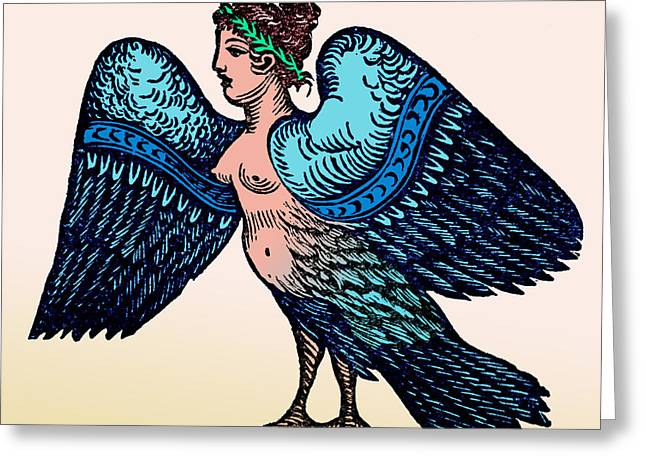Fabled Greeting Cards - Harpy, Legendary Creature Greeting Card by Photo Researchers