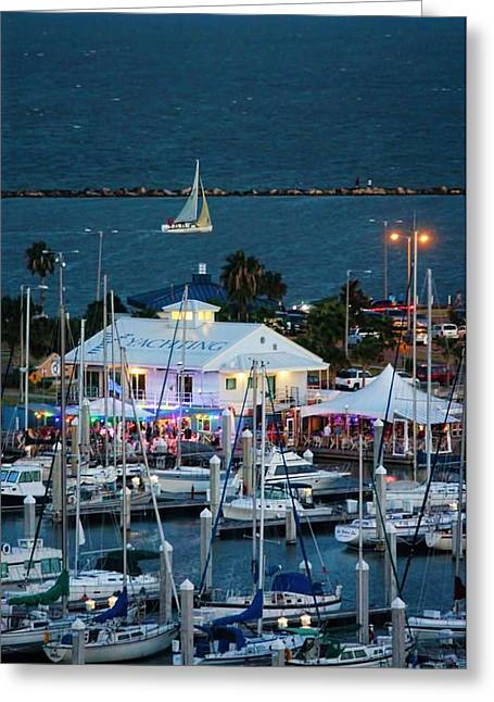 Sailing At Night Greeting Cards - Harrisons Landing in Corpus Christi Greeting Card by Delilah Downs