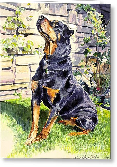Dog Portraits Greeting Cards - Harry The Doberman Greeting Card by David Lloyd Glover