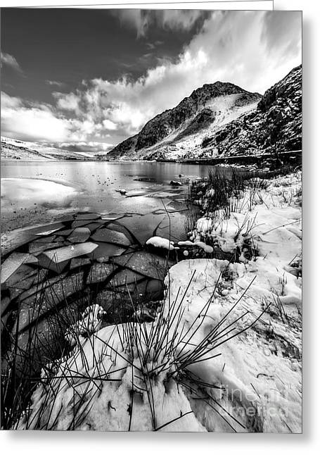 Broken Greeting Cards - Harsh Winter Greeting Card by Adrian Evans