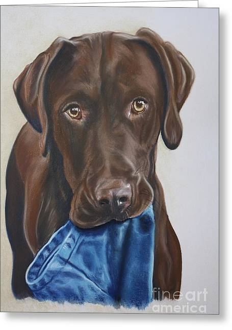 Chocolate Lab Pastels Greeting Cards - Hartwell Greeting Card by Linda Eversole