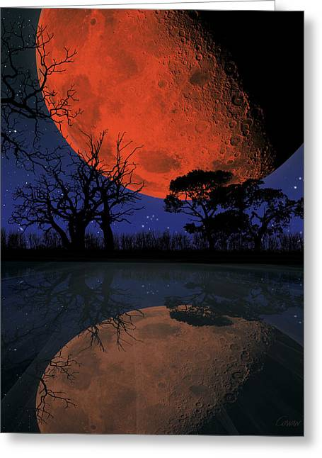 Reflection Harvest Greeting Cards - Harvest Greeting Card by David Cowan