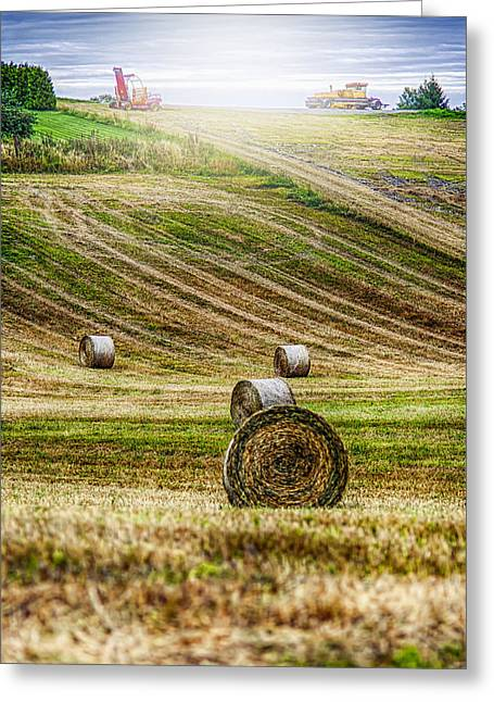 Agricultural Greeting Cards - Harvest Day Greeting Card by Erik Brede