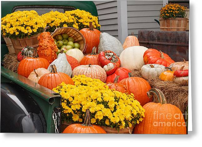 Vermont Country Store Greeting Cards - Harvest Display at the Vermont Country Store Greeting Card by Charles Kozierok