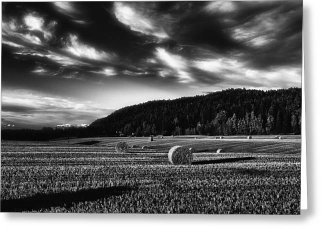 Meadow Scene Greeting Cards - Harvest Greeting Card by Erik Brede