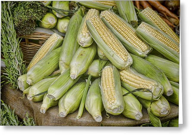 Corn On The Cob Greeting Cards - Harvest Greeting Card by Heather Applegate