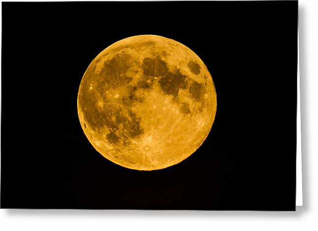 Harvest Moon Greeting Cards - Harvest Moon August 2014 Greeting Card by Danielle Silveira