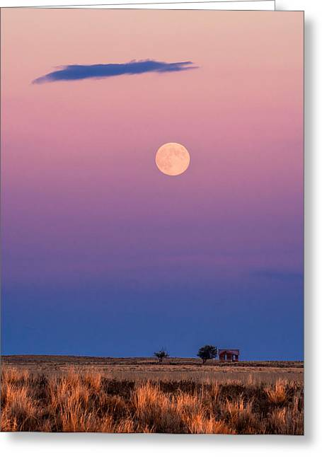 Harvest Moon Greeting Cards - Harvest Moon Greeting Card by Bryce Bradford