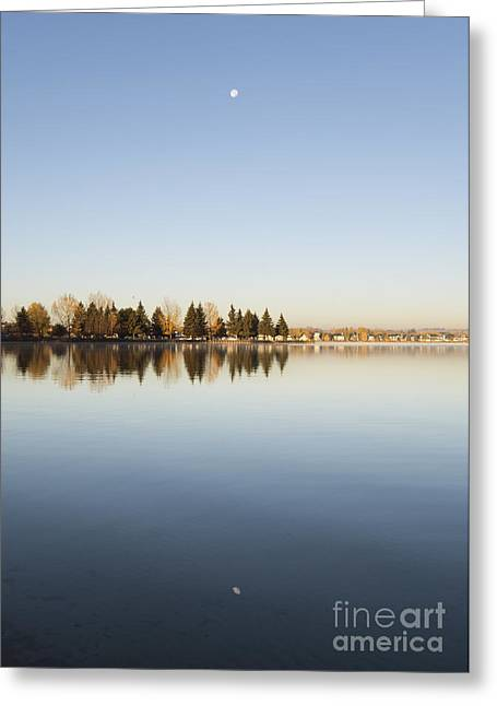 Reflection Harvest Greeting Cards - Harvest Moon Greeting Card by Shannon Carson