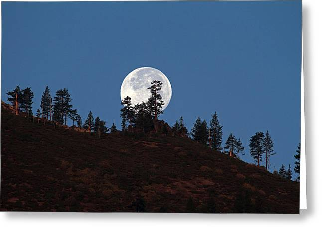 Harvest Moonset Greeting Card by Donna Kennedy