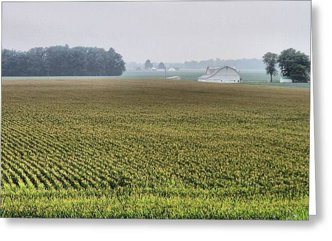 Mid Summer Morning Greeting Cards - Harvest Season Greeting Card by Dan Sproul