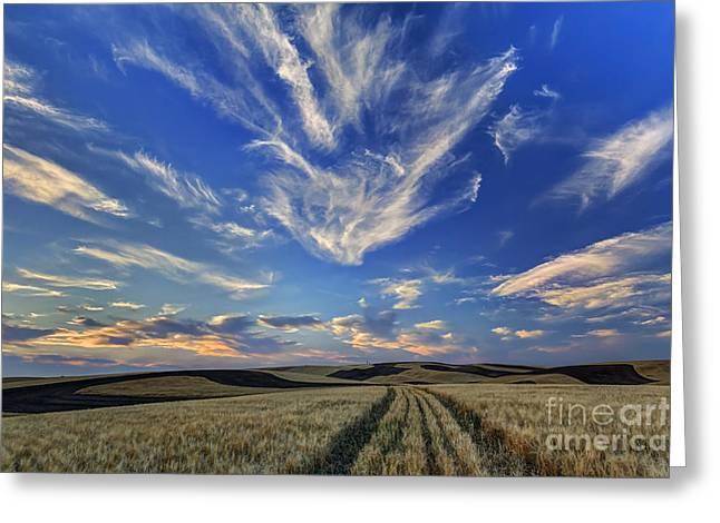 Spokane Greeting Cards - Harvest Sky Greeting Card by Mark Kiver