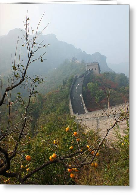 Lucinda Walter Greeting Cards - Harvest Time at The Great Wall of China Greeting Card by Lucinda Walter