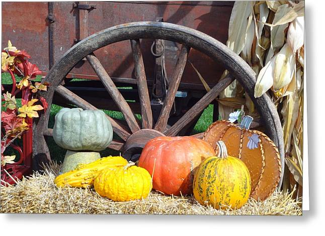 Indiana Scenes Greeting Cards - Harvest time Greeting Card by Laurine Baumgart