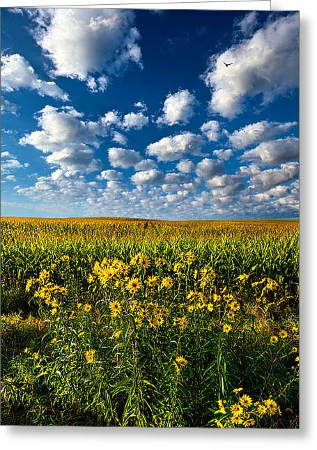 Harvest Photographs Greeting Cards - Harvest Time Greeting Card by Phil Koch