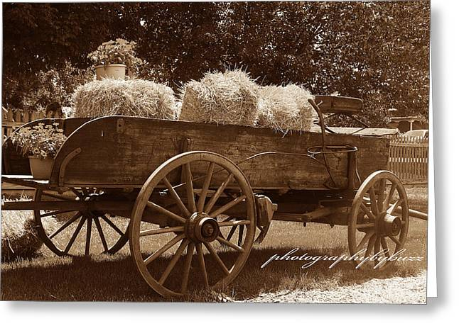 Harvest Time Greeting Cards - Harvest Time Greeting Card by Rick Buzalewski