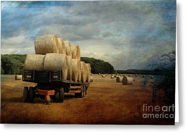 Northamptonshire Greeting Cards - Harvest time. Greeting Card by ShabbyChic fine art Photography