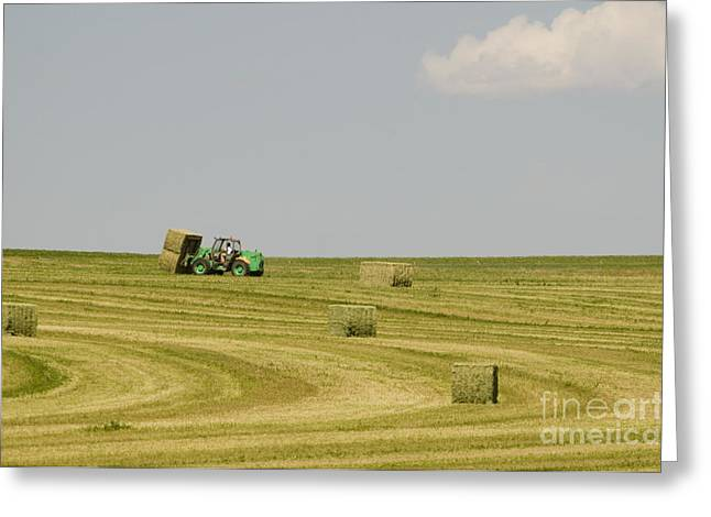 Hay Bales Greeting Cards - Harvesting Bales Of Alfalfa Hay Greeting Card by William H. Mullins