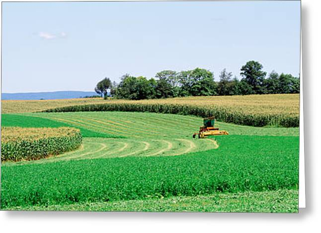 Frederick Photographs Greeting Cards - Harvesting, Farm, Frederick County Greeting Card by Panoramic Images