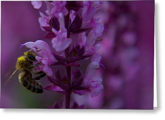 Spokane Greeting Cards - Harvesting of Spring Greeting Card by Stuart Baxter