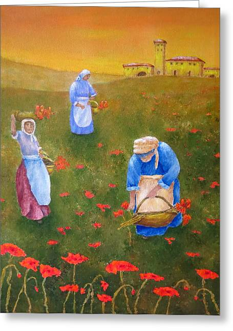 Tuscan Sunset Greeting Cards - Harvesting Poppies In Tuscany Greeting Card by Pamela Allegretto