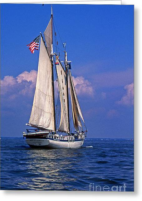 Sailboat Photos Greeting Cards - Harvey Gamage Greeting Card by Skip Willits