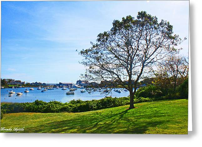 Blue Green Water Greeting Cards - Harwich Cape Cod MA Greeting Card by Brenda  Spittle