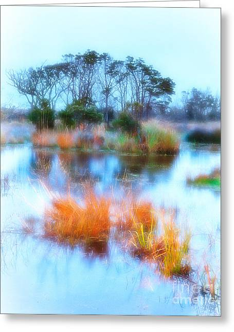 Sunrise Digital Art Greeting Cards - Hatteras Wetlands on the Outer Banks Greeting Card by Dan Carmichael