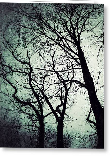 Bare Trees Digital Greeting Cards - Haunted Greeting Card by Natasha Marco