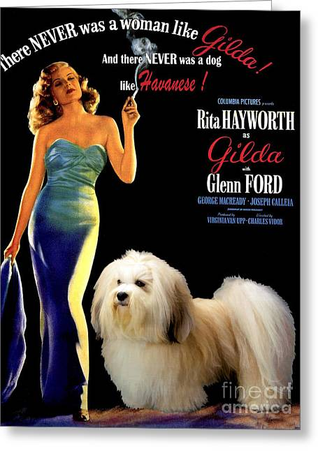 Dog Prints Greeting Cards - Havanese Art - Gilda Movie Poster Greeting Card by Sandra Sij