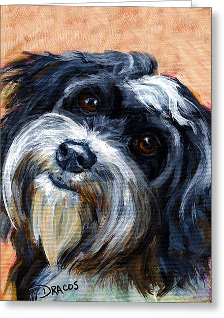 Cuban Artist Greeting Cards - Havanese Dog Portrait Greeting Card by Dottie Dracos