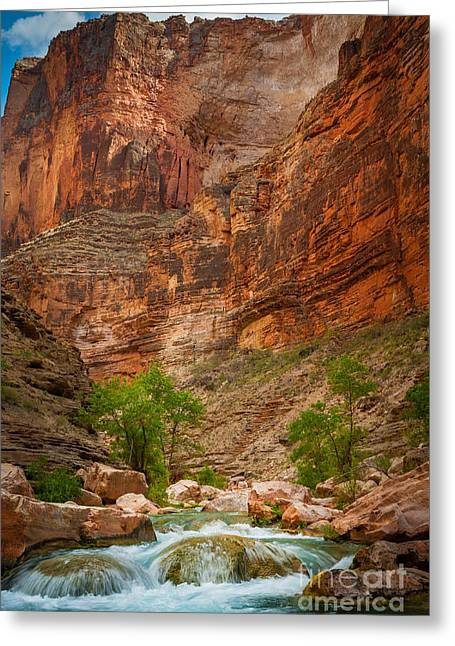 Grand Canyon State Greeting Cards - Havasu Creek Number 3 Greeting Card by Inge Johnsson