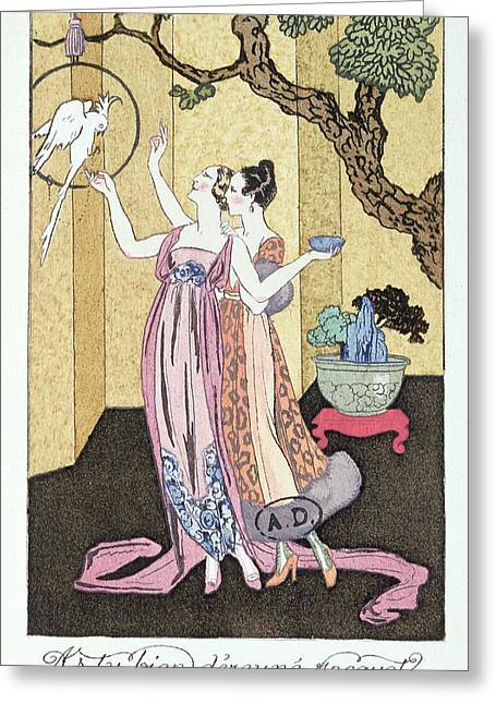Parrots Greeting Cards - Have you had a good dinner Jacquot? Greeting Card by Georges Barbier
