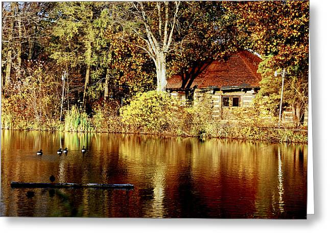 Haverford College Photographs Greeting Cards - Haverford College Lake Greeting Card by Judy Gallagher