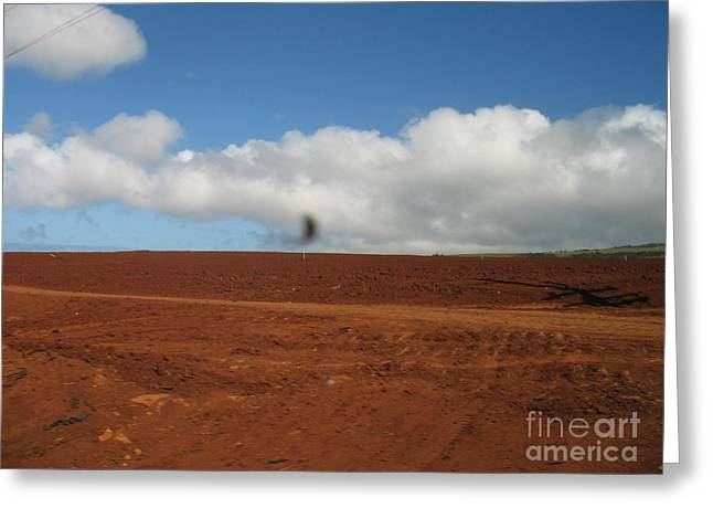 Hawaiin Greeting Cards - Hawaiian landscape Greeting Card by Christina Bartlett