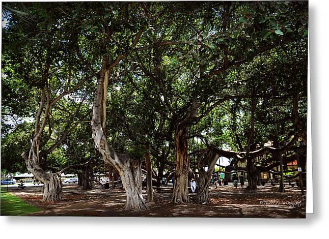Lahaina Digital Greeting Cards - Hawaii - Banyan Park - Lahaina Maui Greeting Card by Paulette B Wright
