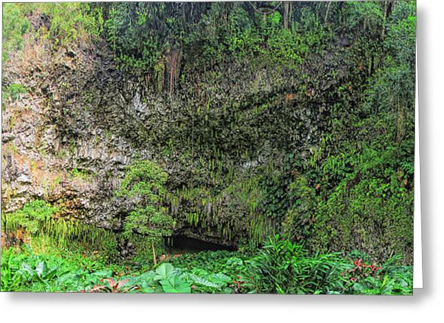 Hawaii Fern Grotto Greeting Card by C H Apperson