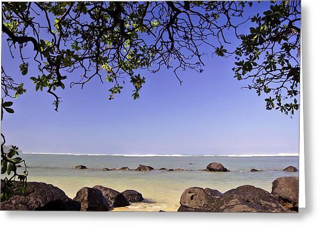 Ocean Landscape Greeting Cards - Hawaiian Beach  Greeting Card by Barbara Tri