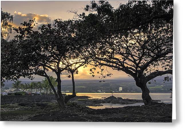 Alga Greeting Cards - Hawaiian Nights Greeting Card by Daniel Hagerman